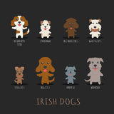 Set of irish dogs Stock Images