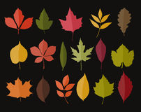 Set of isolated autumn colored leaves Stock Images