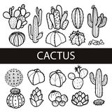 Set of isolated cactus and succulents in black outline. Vector   Royalty Free Stock Image
