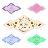 Set of isolated colored templates with text - organic fruits and vegetables. vector illustration