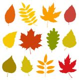 Set of isolated colorful autumn leaves silhouettes Stock Image