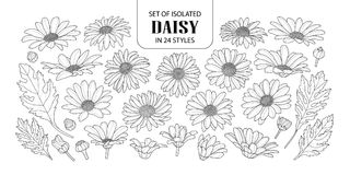 Set of isolated daisy in 24 styles. vector illustration