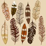 Set of isolated feather icons Royalty Free Stock Images