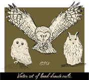 Set of isolated hand-drawn owls 1. Royalty Free Stock Photos