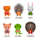 Set of isolated hedgehog and kid urchin, leopard Stock Photography