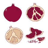 Set of isolated pomegranate icon Royalty Free Stock Images