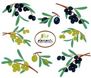 Set of isolated olive branches. Illustration of set of isolated olive branches vector illustration