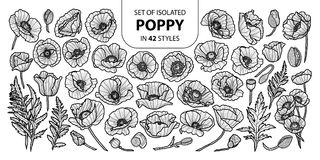 Set of isolated poppy in 42 styles. Cute hand drawn vector illustration in black outline and white plane. Royalty Free Stock Image