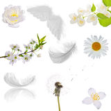 Set of isolated purity objects. Set of isolated objects which can be associated with purity Stock Photography