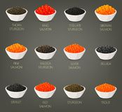 Set of isolated seafood, fish food, caviare Royalty Free Stock Images