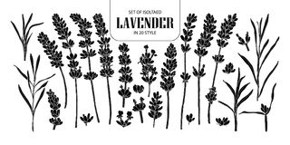 Set of isolated silhouette Lavender in 20 styles. Cute hand draw Royalty Free Stock Photos
