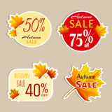 Set of isolated stickers with autumn leaves. Stock Photos