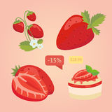 Set of isolated Strawberry. Cartoon illustration of berry. Vector illustration. Stock Images
