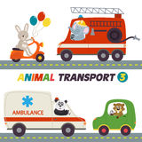 Set of isolated transports with animals part 3. Vector illustration, eps Royalty Free Stock Photography