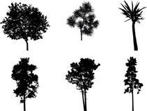 Set isolated trees - 1 Royalty Free Stock Photos