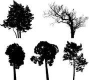 Set isolated trees - 7 Stock Photo
