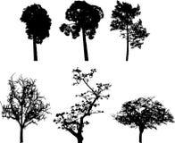 Set isolated trees - 8 Stock Photo