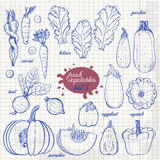 Set of isolated vegetables in a sketch style on paper. Carrots, lettuce, zucchini, eggplant, pumpkin, beets, squash Stock Photo