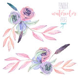 Set with isolated watercolor floral bouquets from tender flowers and leaves in pink. And purple pastel shades, hand drawn on a white background Royalty Free Stock Image