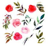 Set of isolated watercolor pink roses, leaves, plants. stock illustration