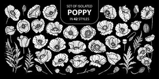 Set of isolated white silhouette poppy in 42 styles .Cute hand drawn flower vector illustration in white plane and no outline. Set of isolated white silhouette vector illustration