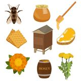 Set of items necessary for collecting honey and for its use. Pasechnik, beehive, honeycombs, bees, flowers royalty free illustration