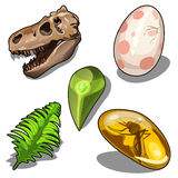 Set of items on theme of ancient natural resources Stock Images