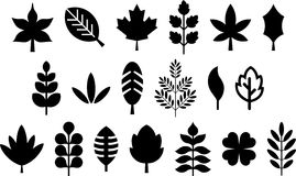Set of ized leafs Stock Photo