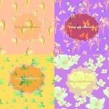 Set jaśmin, motyl, leluja dolina, fiołkowa śnieżyczka f Zdjęcia Royalty Free