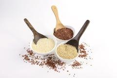 Set jaśminowa ryżowa kolekcja węglowodany, witaminę i kopalinę, ten dobry dla zdrowie na odosobnionym białym tle Obraz Stock