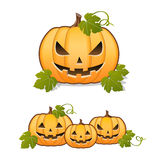 Set of Jack-o'-Lantern on white background Stock Image