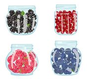 Set of jars filled with berries. Vector illustration royalty free illustration
