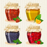 Set of jars with fruits Royalty Free Stock Photos