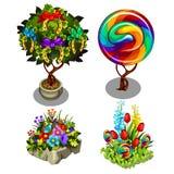 Set jaskrawe rośliny, ozdobni kwiaty odizolowywający na białym tle i Stubarwny topiary i bonsai wektor ilustracja wektor