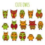 Set jaskrawi kreskówek owlets i sowy Zdjęcie Stock