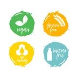 Set jedzenie etykietki - allergens Karmowa nietolerancyjność symbol zbiera Obrazy Royalty Free