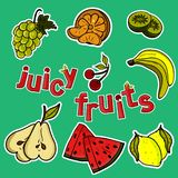 A set of juicy fruits vector illustration