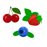 Set of juicy ripe berries isolated on a white Stock Photos