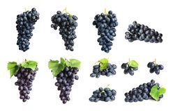 Set with juicy ripe grapes. On white background royalty free stock photos