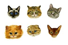 Set kaganów koty na białym tle watercolour acrylic kolorów papier ilustraci papier Doskonalić dla tkanin, karty, koszulka druki ilustracja wektor