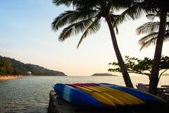 Set kajaka kłamstwo na tropikalnej brzegowej naturze zdjęcia royalty free