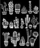 Set kaktusy ilustracji