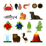 Set of Kamchatka Peninsula. Crab, mussel, shrimp, sea urchin, fish, caviar, seal, cowberry, blueberry, ramson, fern geyser bear eagle volcano Eurasia Russian Royalty Free Stock Photo