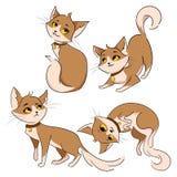 Set Karikaturkatzen Sammlung nette rote Katzen Haustiere mit Gefühlen Spielen der Tiere Abbildung für Kinder Lizenzfreies Stockbild