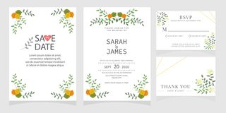 Set karta z kwiat różą, liście Kwiecisty plakat, zaprasza Ślubny ornamentu pojęcie Ślubny zaproszenie karty szablon zdjęcie royalty free