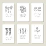 Set karty, zaproszenie z ręka rysujący kwiecistym Obrazy Royalty Free