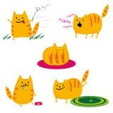 Set Katzen lizenzfreie abbildung