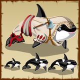 Set of killer whales and the armed orca Royalty Free Stock Photo