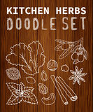 Set. Kitchen herbs Fruit doodle set. Background texture of wood. Set can be used for your business a cafe, a restaurant, a health food store.  Set of elements 15 Royalty Free Stock Photo