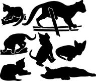 Set of kittens silhouettes Stock Image